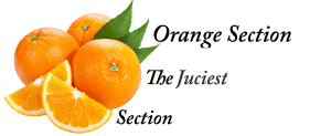 ORANGE SECTION | THE JUICIEST SECTION
